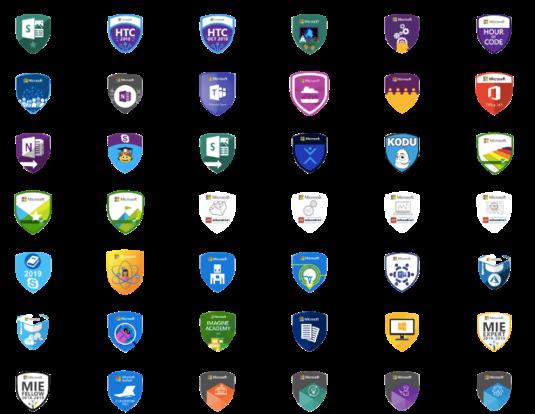 MS badges
